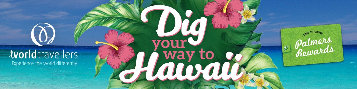 Dig Your Way To Hawaii